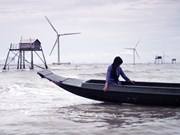 Climate change film to be screened in US