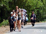 Vietnam - popular destination for British tourists