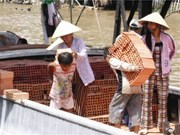 Vietnam pledges to combat child labour