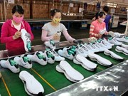 Dong Nai's footwear exports to exceed 2.1 bln USD