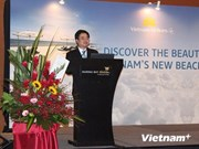 Direct air route hoped to fuel VN-Singapore ties