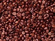 Indonesia's coffee exports surge