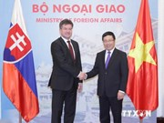 Vietnam, Slovakia agree to beef up trade ties