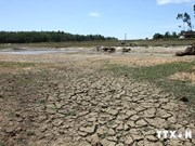 Post-2015 Support Programme to Respond to Climate Change discussed