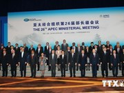 Vietnam vows continued support for APEC to strengthen regional links