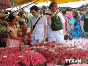 Philippines sees slight rise in 7-month tourist arrivals