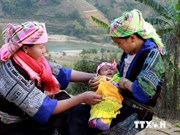 Hoa Binh asked to reduce poverty among ethnic minorities