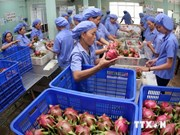 Fruit, vegetable exports likely to earn 1.4 billion USD