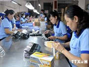 Vietnam-Europe cooperation on education improves workforce