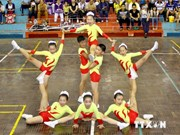 Vietnam wins six golds at Asian aerobics competition