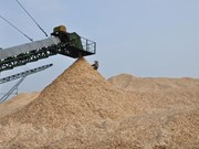 Increase export tax on woodchips: MARD