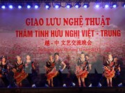 Vietnam-China diplomatic ties marked in Beijing