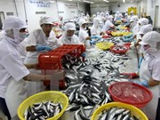 Seafood exports to hit 8 billion USD in 2015