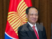 ASEAN races to form common community: ASEAN chief