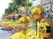 Flower, book streets embellish Ho Chi Minh City