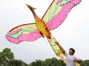 Vietnam art kite festival held with flying colours