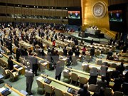 VN attends UN debate on HR, climate change