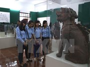 Ancient lion and lion-like sculptures on show in Can Tho