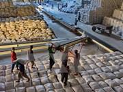 Hau Giang: Rice market fares well