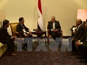 Egypt seeks further cooperation with Vietnam