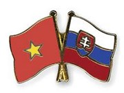 HCM City to promote links with Slovak localities