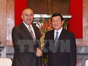 Turkish FM on Vietnam visit to foster ties