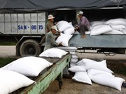 Rice stockpiling nears national target