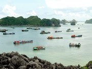 Hai Phong fosters tourism development