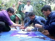 War remains found in Binh Duong