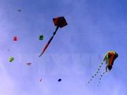 Local, foreign artisans gather for kite festival