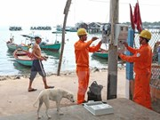 Submarine power cable comes to HCM City's island commune