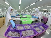 Bac Lieu exports 101 mln USD worth of frozen prawn