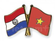 Vietnam, Paraguay hold first political consultations (CORRECTION)