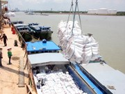 Rice exports to Africa shows signs of recovery