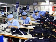 Clothing likely to remain top export: HSBC