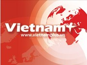 Overseas Vietnamese welcome Tet in HCM City