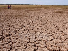 Severe drought hit Mekong Delta region