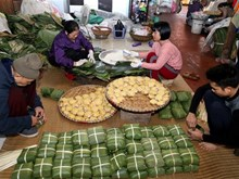 Traditional village makes about 468,600 Chung cakes before Tet