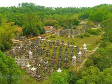 Stunning view of Bo Da ancient pagoda in Bac Giang