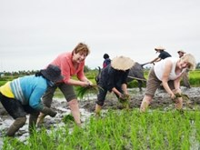 Agro-tourism needs a boost