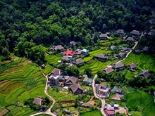 Stunning view of Ha Giang's natural landscapes in summer