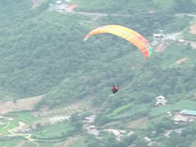 Paragliding festival offers stunning view of terraces