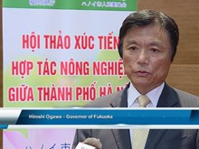 Vietnam, Japan localities boost agricultural cooperation