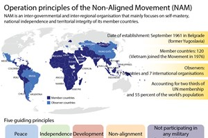 Operation principles of Non-Aligned Movement