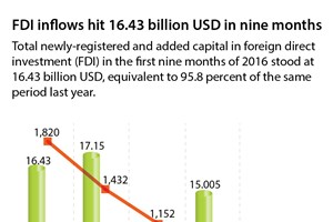 FDI inflows hit 16.43 billion USD in nine months