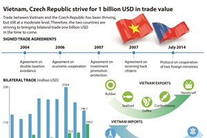 Vietnam, Czech Republic strive for 1 billion USD in trade value