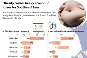 Obesity causes heavy economic losses for Southeast Asia