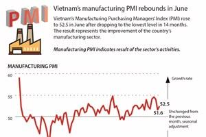Vietnam's manufacturing PMI rebounds in June