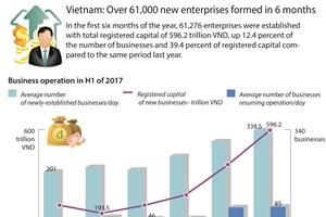 Vietnam: Over 61,000 new enterprises formed in 6 months