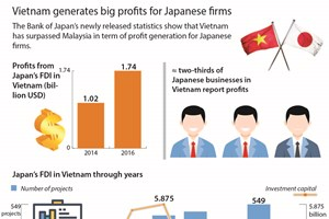 Vietnam generates big profits for Japanese firms
